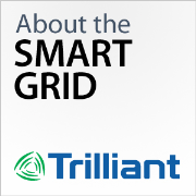 About the Smart Grid