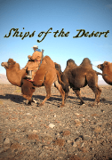 Ships of the Desert