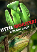 Little Monsters - Hide & Cheat