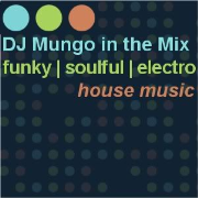 DJ Mungo in the Mix
