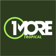 1MORE Tropical - France