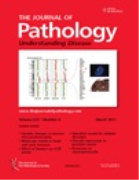 Podcasts from The Journal of Pathology