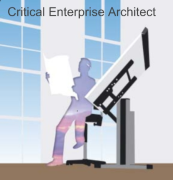 Critical Enterprise Architecture netcast