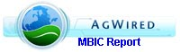 MBIC Report