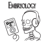 Biology 3130 -- Embryology with Doc C
