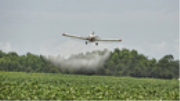 """The """"Outdated Pesticide"""" Chlorpyrifos Is Linked to a Range of Health Issues. Why Isn't It Banned?"""
