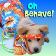 PetLifeRadio.com - Oh Behave - Harmony in the household with your pets, & animal behavior on Pet Life Radio.