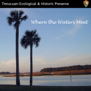 Inside the Timucuan Preserve