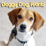 PetLifeRadio.com - It's A Doggy Dog World - All about dogs as pets & caring for your pet dog, on Pet Life Radio