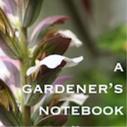 A Gardener's Notebook with Douglas E. Welch