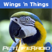 PetLifeRadio.com - WingsNThings - Birds & Parrots as Pets - All About Pet Birds on Pet Life Radio
