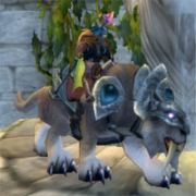 The WOW Druidcast