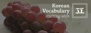 "TTMIK - Korean Vocabulary Starting with ""ㅍ"""