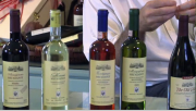 The Undiscovered World Class Wines of Greece