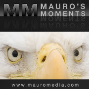 MauroMedia » Mauro's Moments Podcast